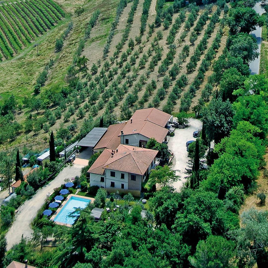 cesani winery sangimignano siena